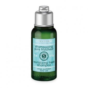 L'Occitane Aromachologie Frische Shampoo