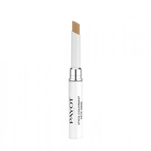 Payot Pate Grise Stick Couvrant Pate Grise